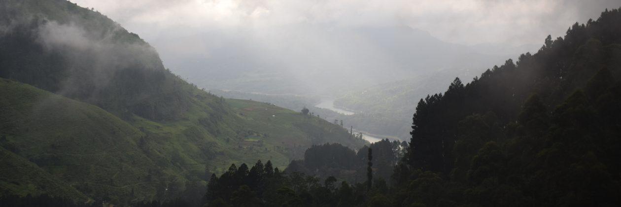 El Bosque Nublado
